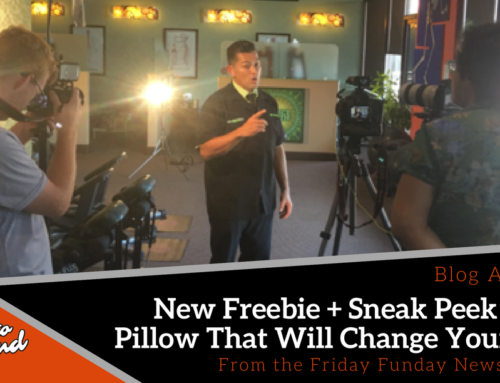 Friday Funday 21: New Freebie + Sneak Peek At A Pillow That Will Change Your Life